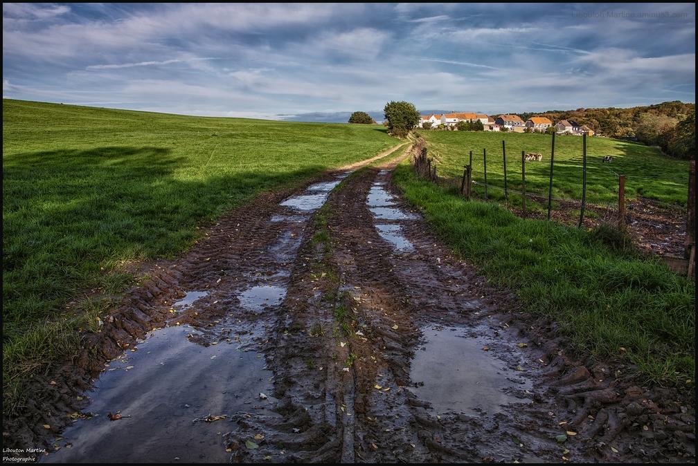 Le chemin de terre
