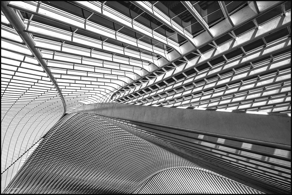 La gare des Guillemins