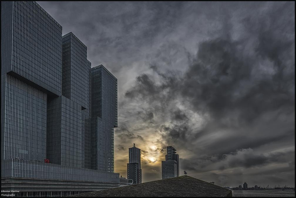 Un petit tour à Rotterdam pour commencer 2020 !!!
