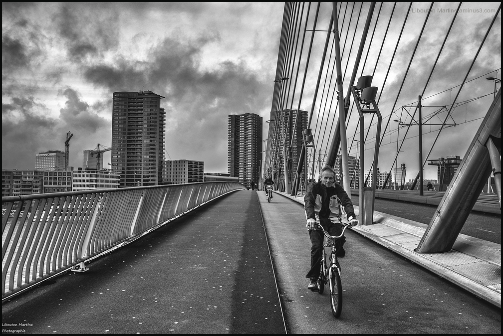 Le cycliste de Rotterdam !