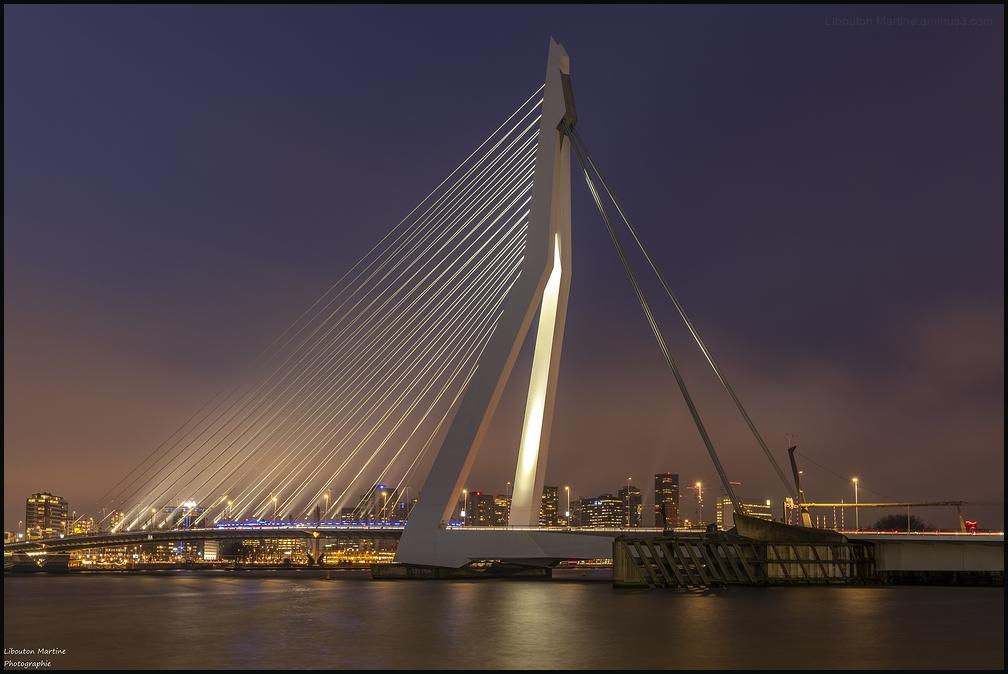 Le pont Erasmus à l'heure bleue !