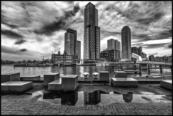 Sur les quais de Rotterdam