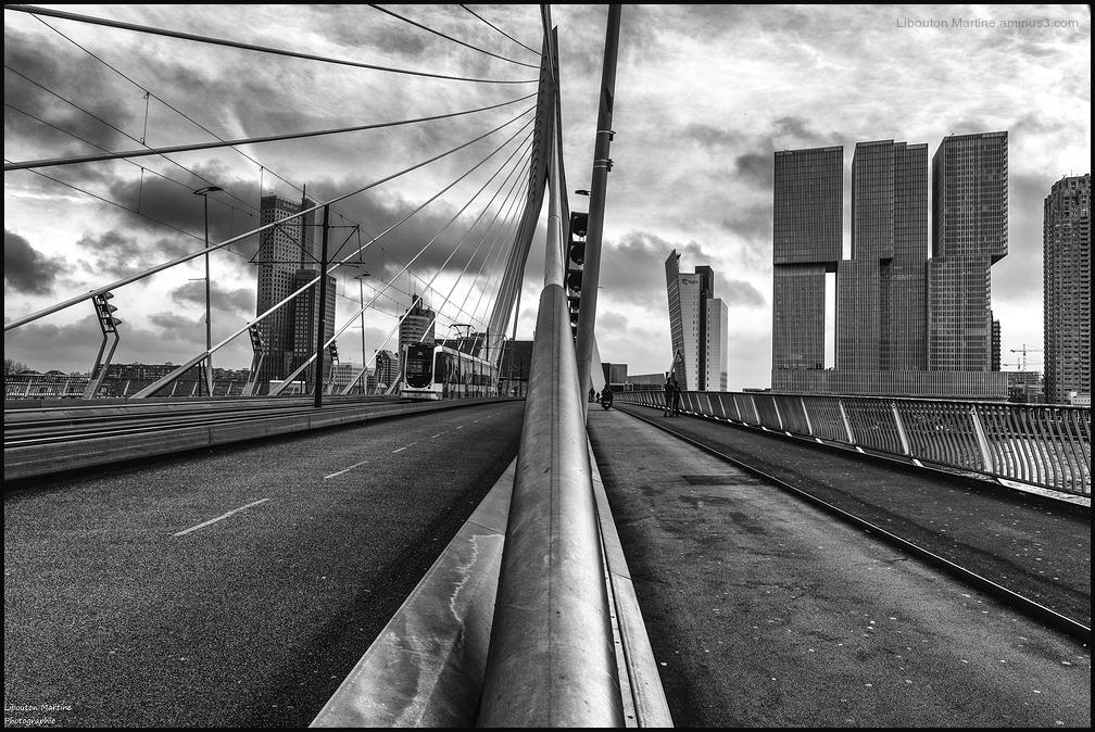 Le pont Erasmus