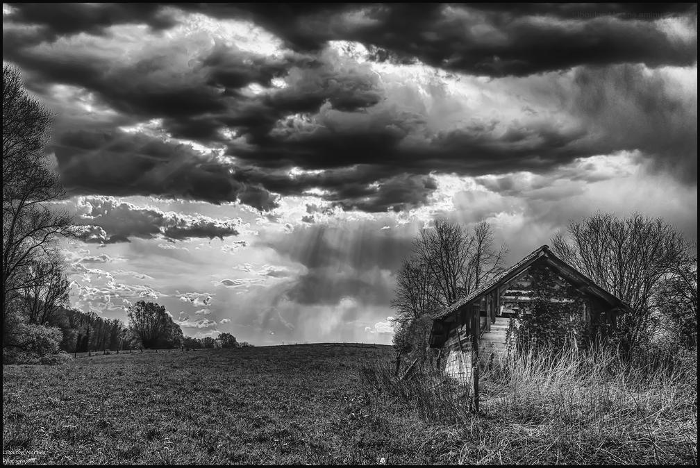 La petite cabane dans la prairie