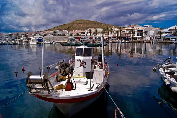 Taz Boat