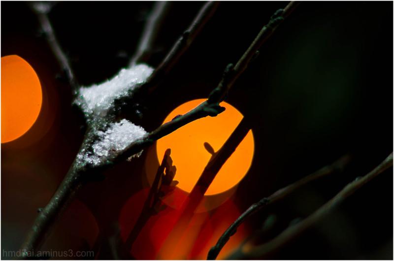 Emotional Winter