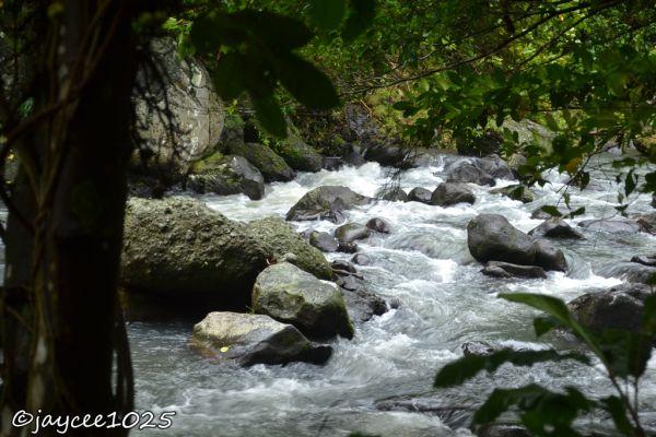 riverside, river, rapids, eco park