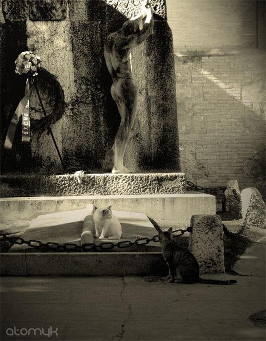 Cats Cemetery.