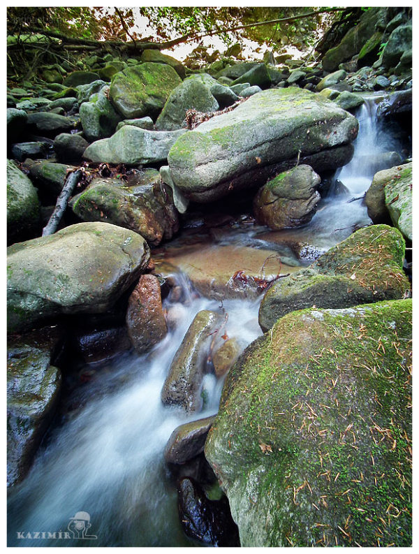 Mountain stream I