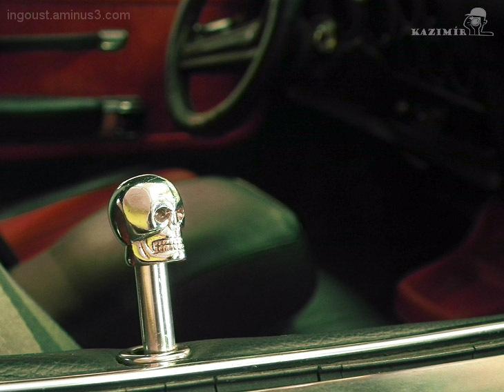 Skull  (Hands off my car!)