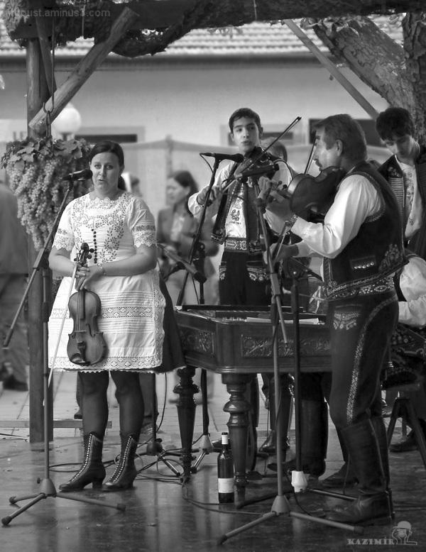Folk cimbalom band