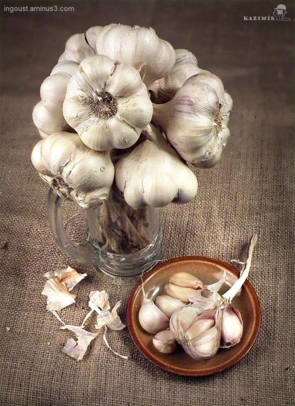 Garlic 03