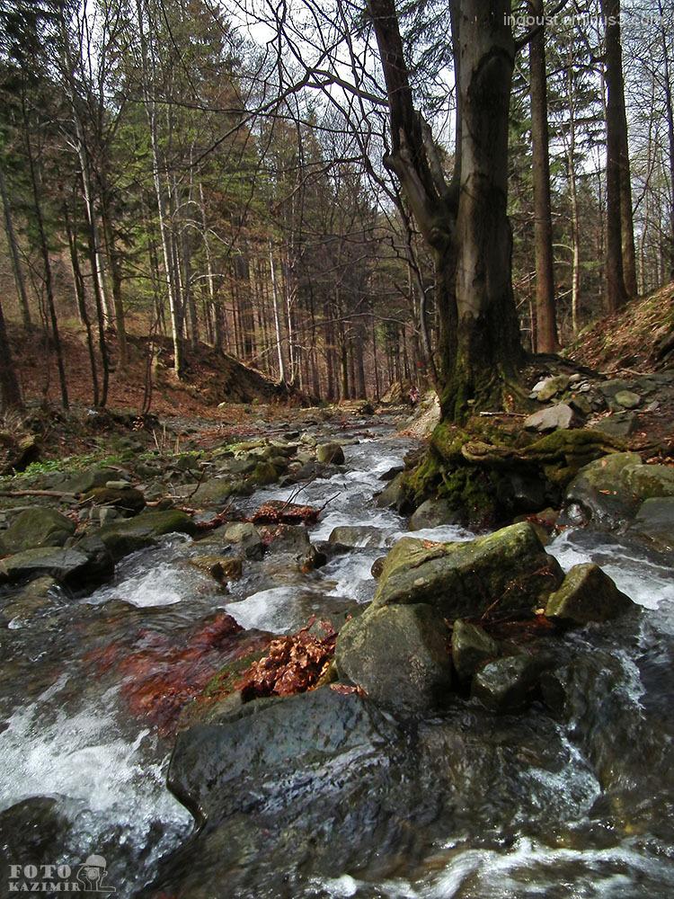 Bučací stream 3/ Beskydy Mountains
