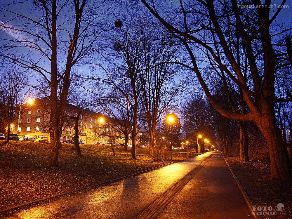 Havířov City in the night IV.