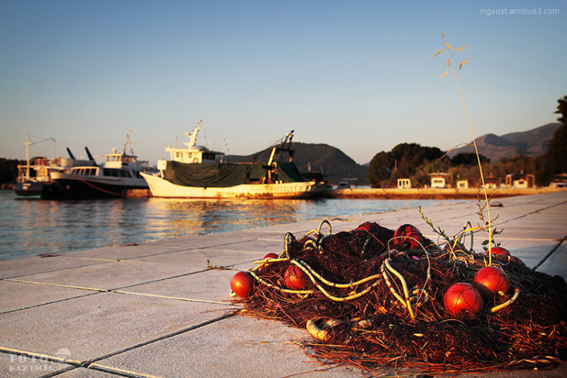 sea, net, marine, harbour, sun
