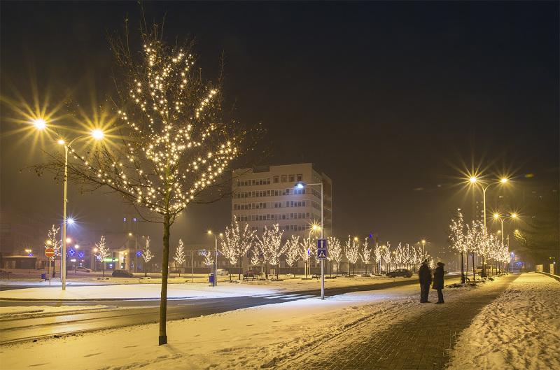 Frosty night walk 4