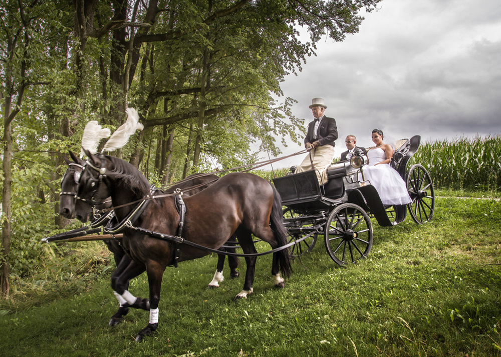 Wedding ride