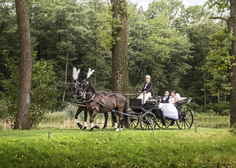 Wedding ride 3