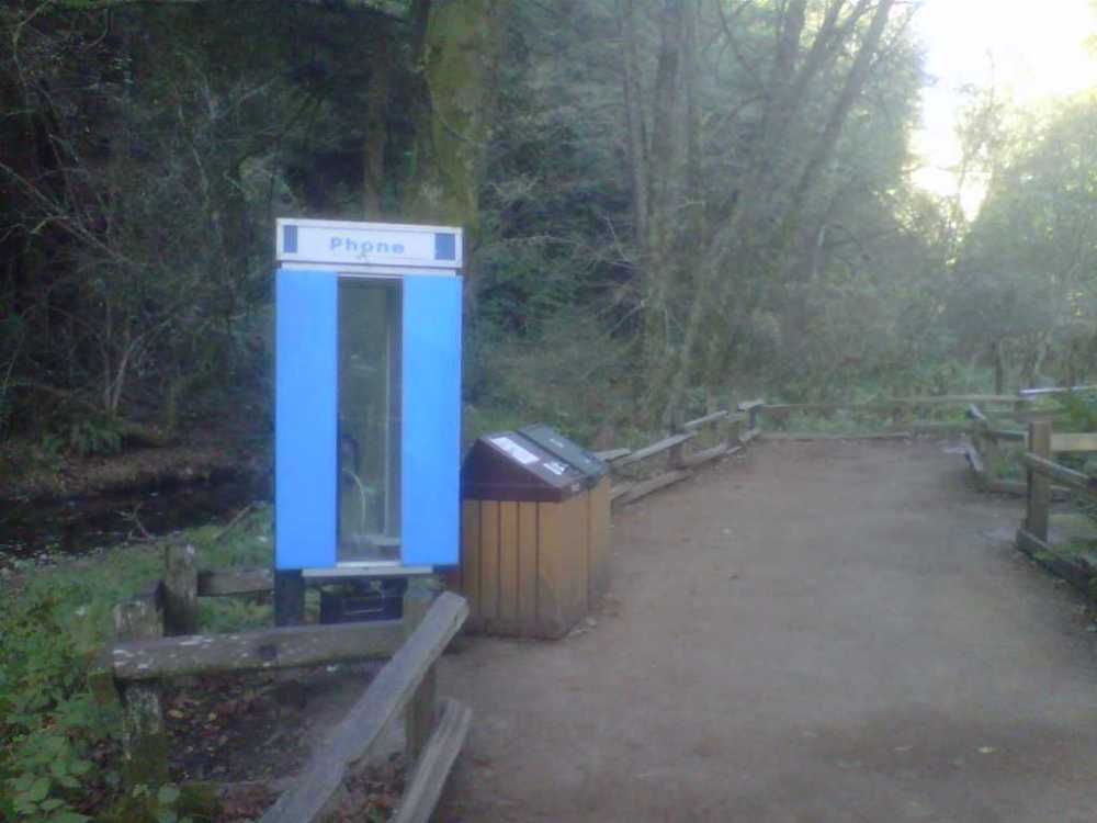 payphone muir woods