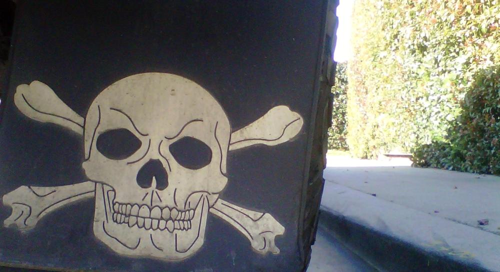 skull mud flap