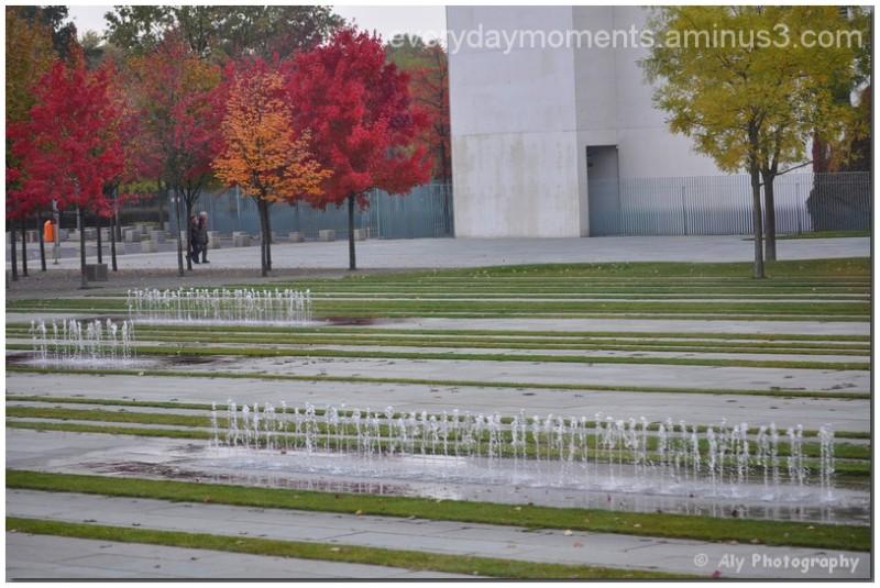Nikon D5000,trees,colors,water