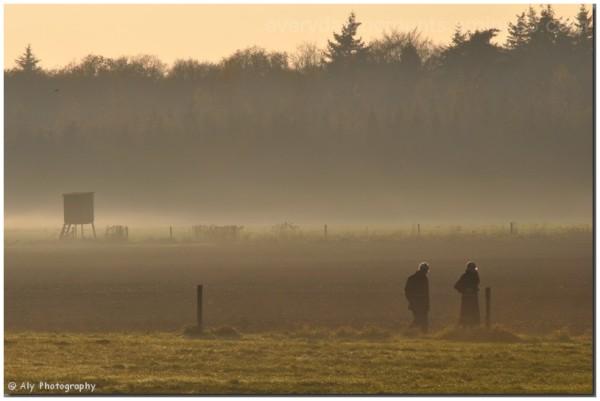 wandelen, misty,november,Nikon D5000
