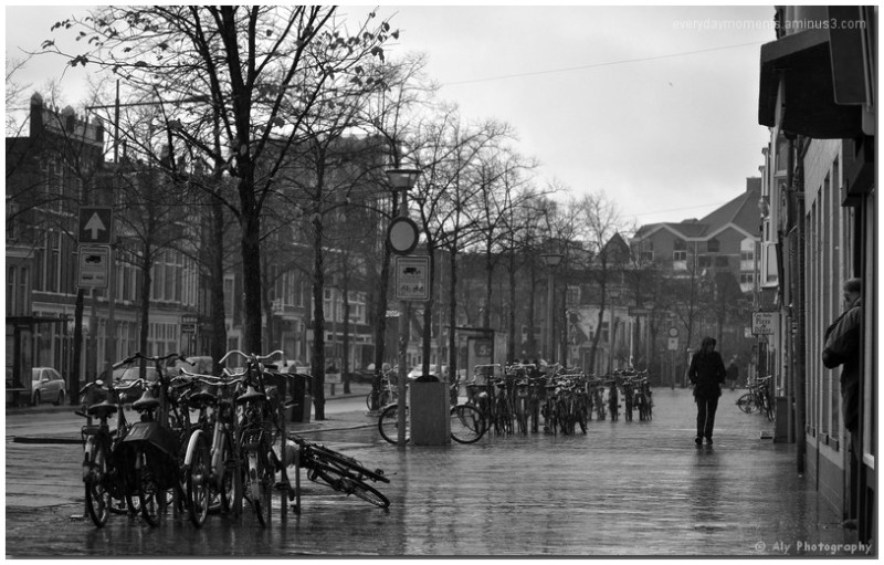 Groningen, regen,foto excursie,Nikon D5000