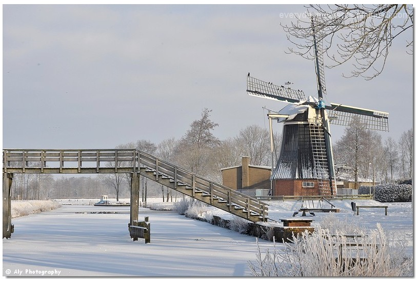 Winterwonderland de Groeve,Nikon D5000