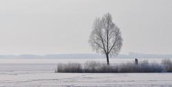 ijs & sneeuw,zuidlaardermeer,Nikon D5000