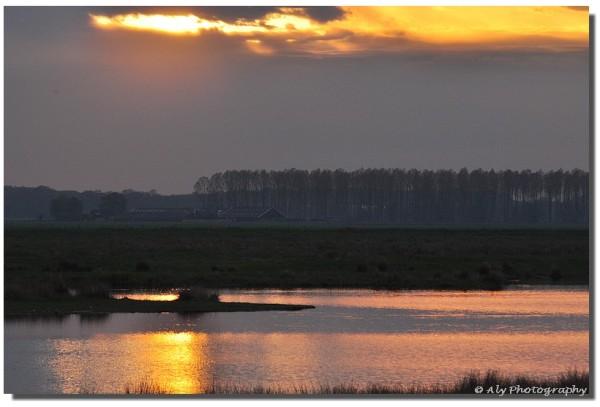 Nikon D5000,sunset
