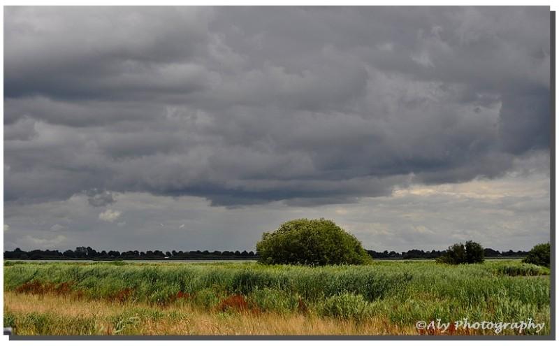 Regenwolken, wind,juli 21