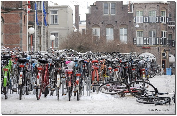 bicycles together