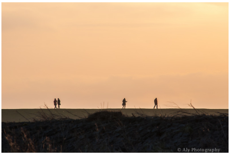 A little walk on the dike