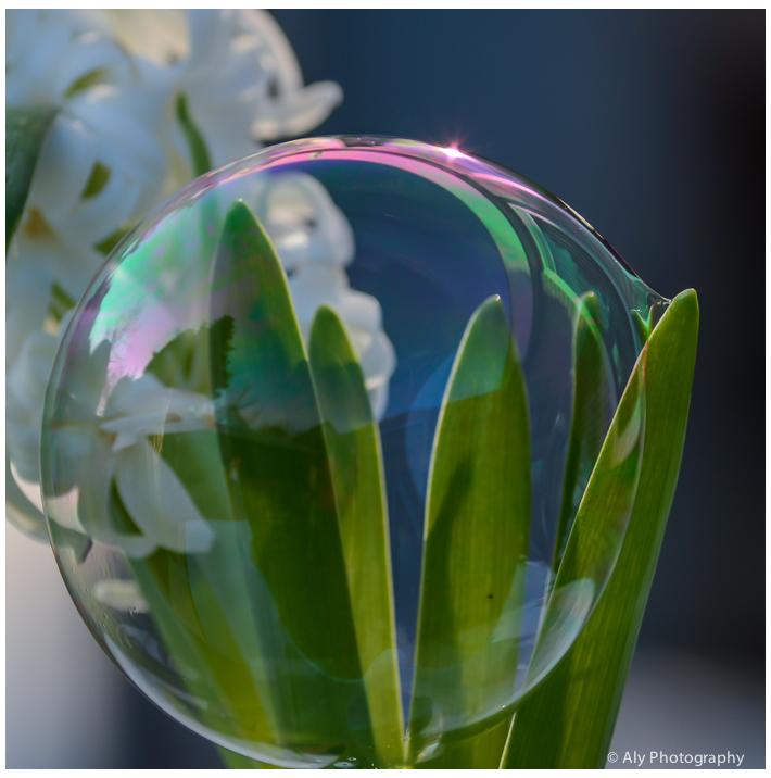 bubble,