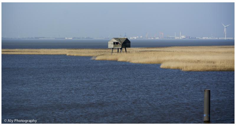 birdwatch hut