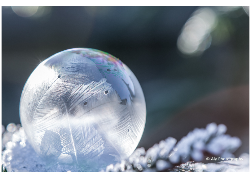 Frozen bubble 2