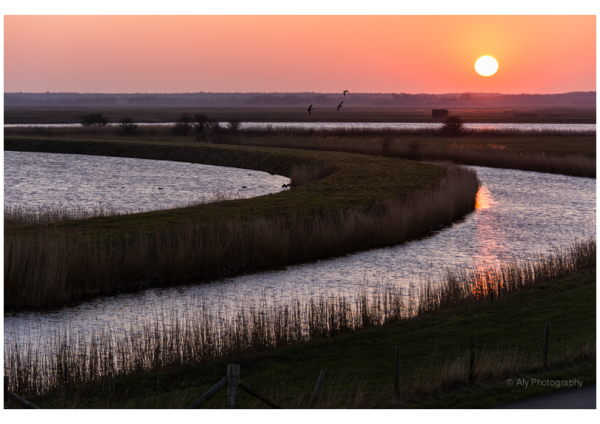 Sunset Texel