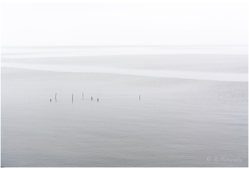 Even with gray weather the Wadden Sea is a picture