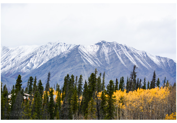 mountains Yukon Canada