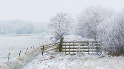 Last week we had a beautiful winter landscape