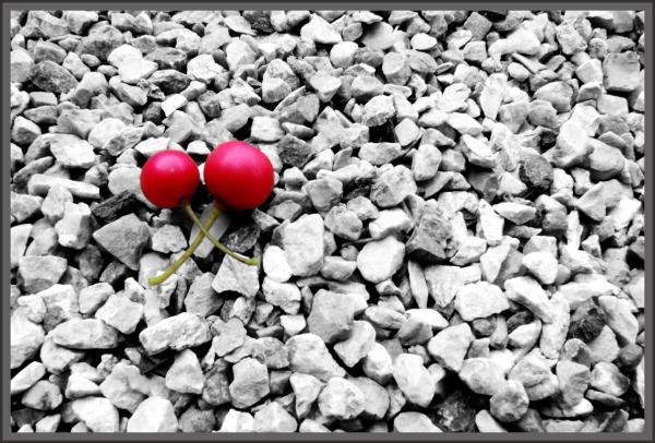 ...red cherry...