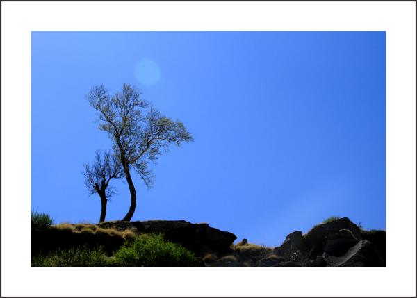... silent '' BLUE '' ...