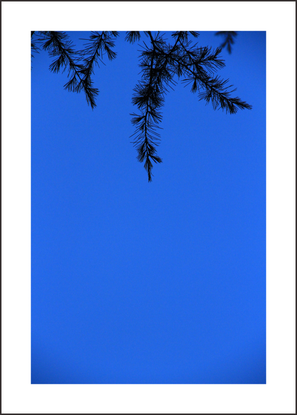 ... blue sky ...