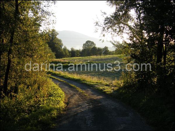 countryside czech republic