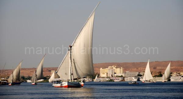 Felukas on Nile