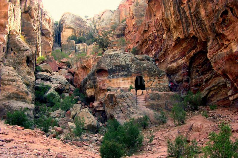 Garden in Petra
