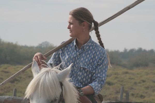 Beau cheval camarguais