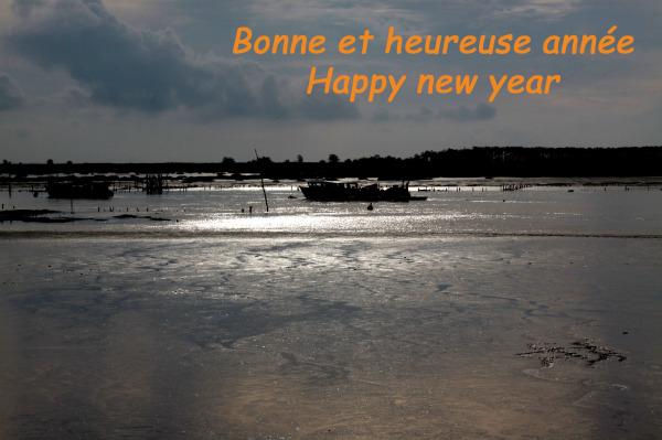 Bonne et heureuse année!!!