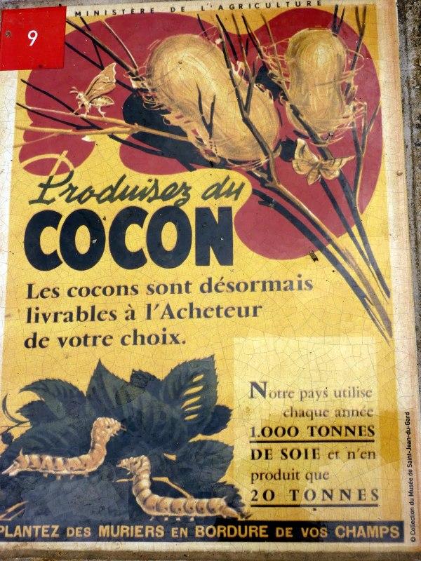 Cocons