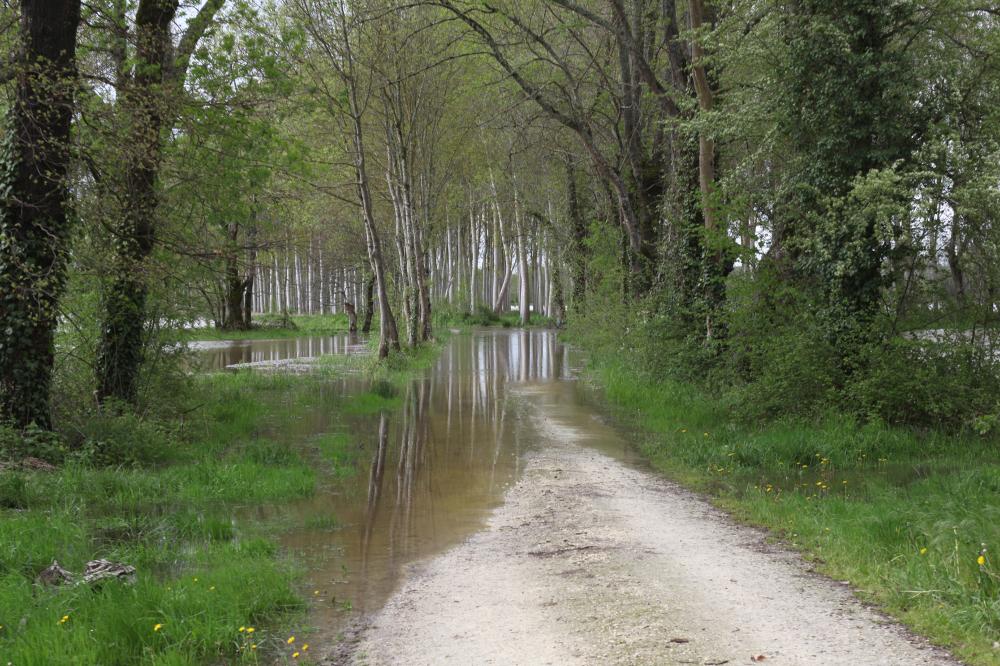 Route coupée